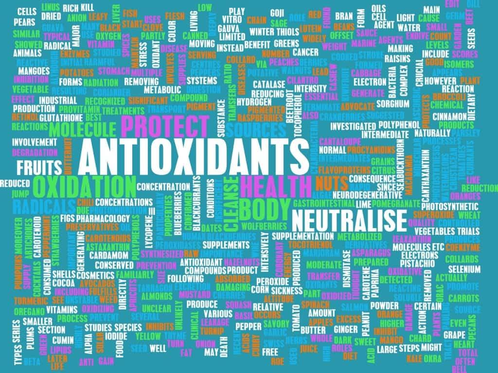 L'integrazione con antiossidanti per contrastare il dolore nelle malattie croniche.