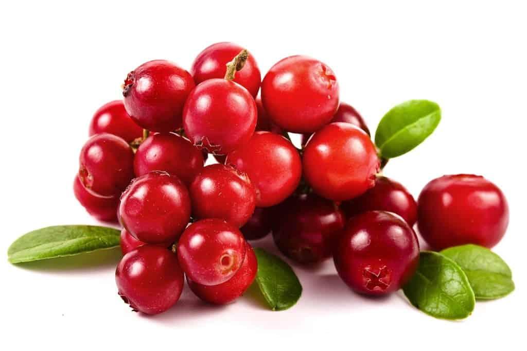 estratto-di-cranberry