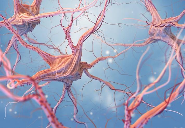 epidemiologia epilessia
